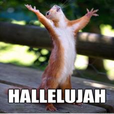 hallelujah-squirrel-edited